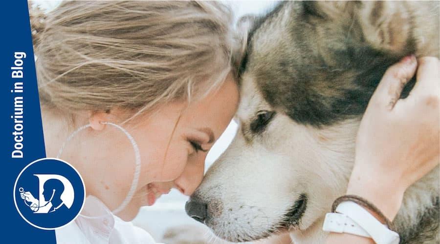Pet therapy come gli animali da compagnia possono aiutare in varie condizioni patologiche